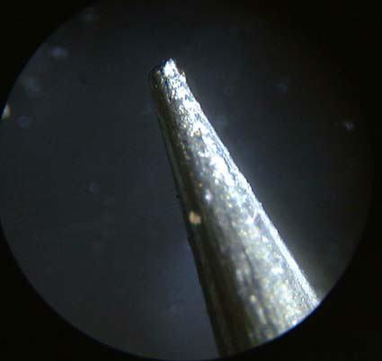 顕微鏡で見ると面白いもの教えてーー - 1. お札のマ …